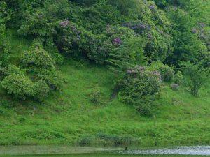 Image courtesy of PDphoto.org