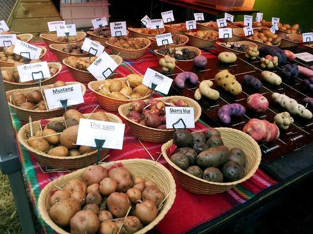Irish Potato Market