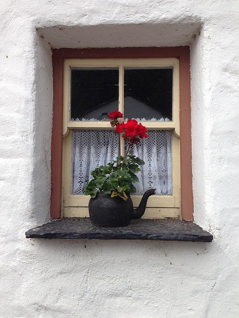 Window of an Irish Cottage